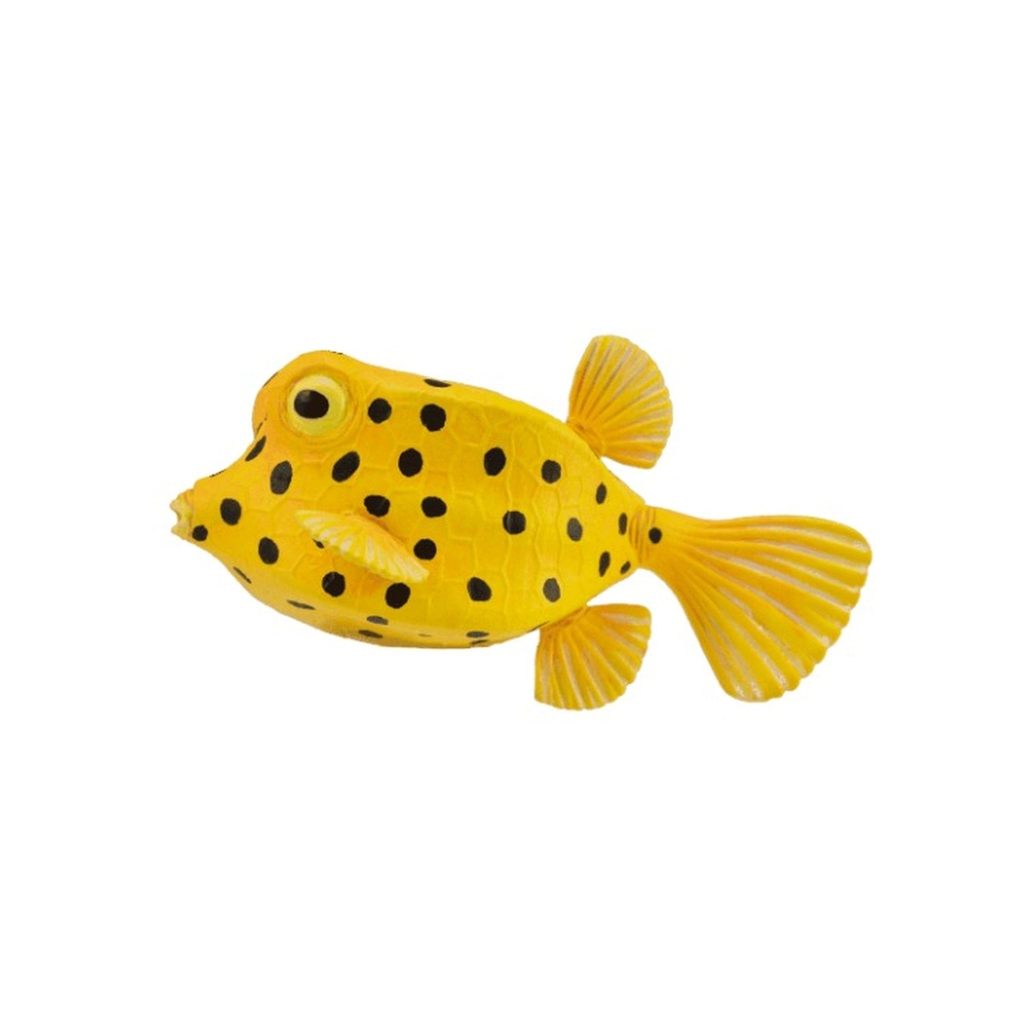 CollectA - Boxfish