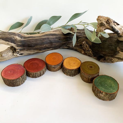 EARTH Rainbow Logs - Set of 6