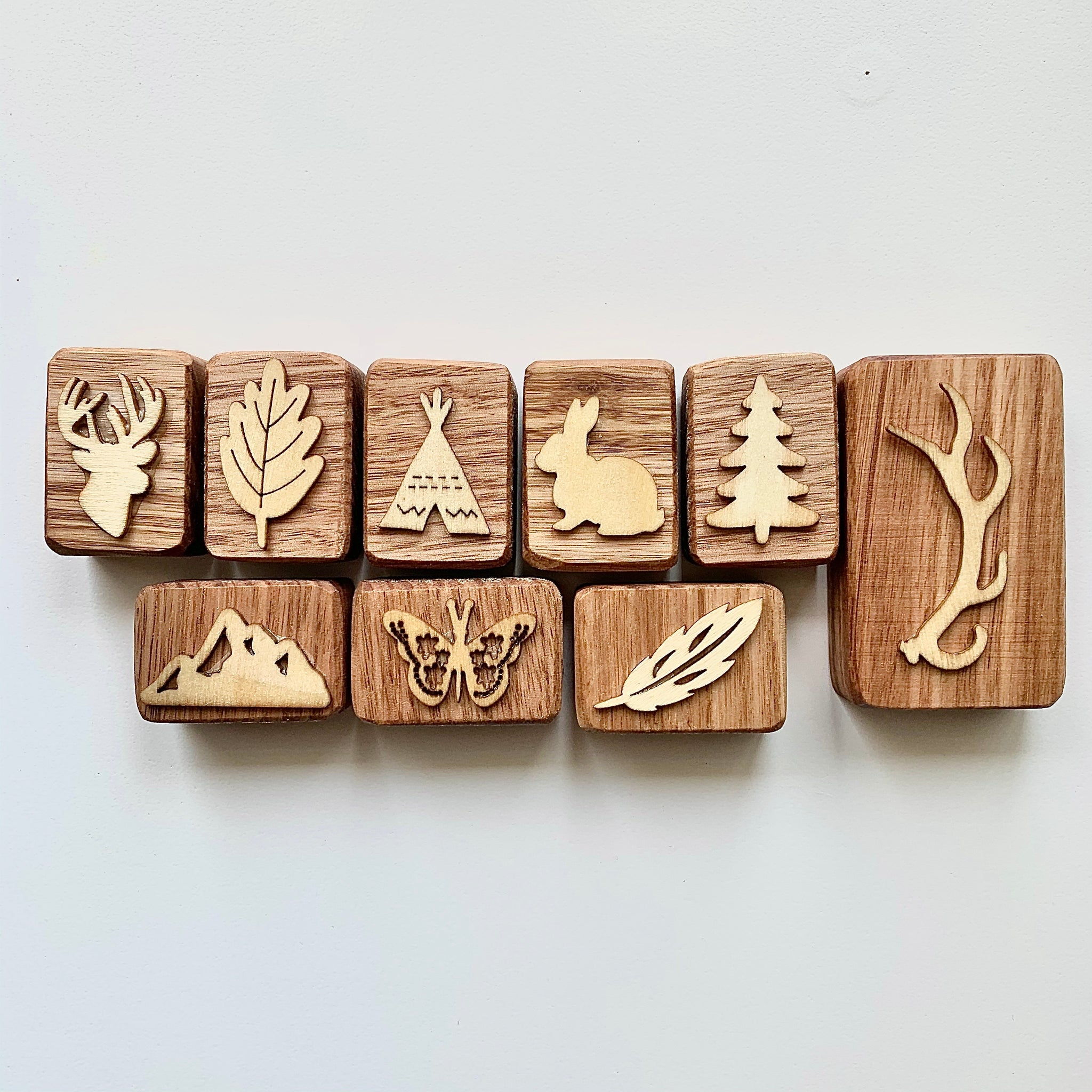 Into the Wild Playdough Stampers