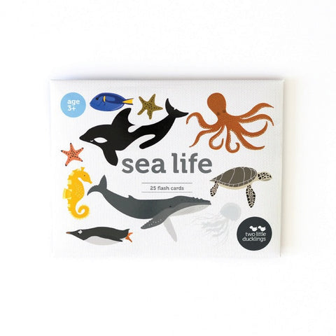 Sea Life Flash Cards