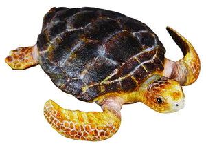 CollectA - Loggerhead Turtle