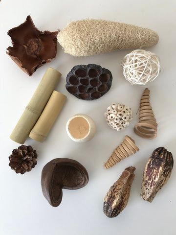 Nature Discovery Kit