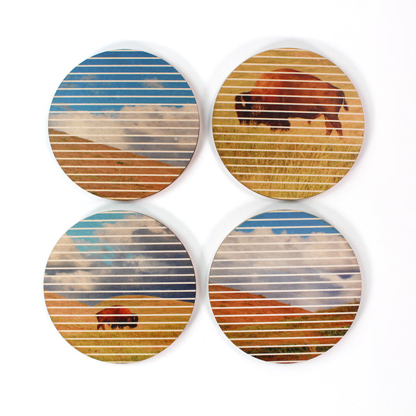 American Bison Coasters - Set of 4