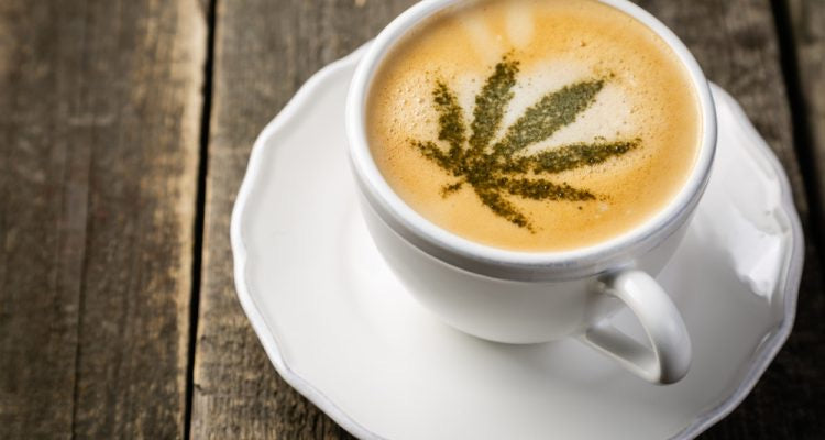 Fresh CBD COLLAGEN COFFEE