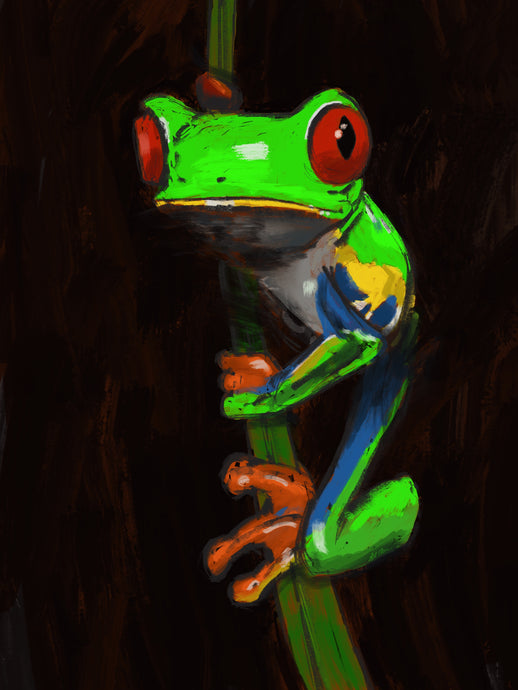 Red Eyed Tree Frog (limited edition giclée print)