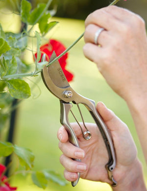 Sophie Conran Secateurs - The Cottage Gardener