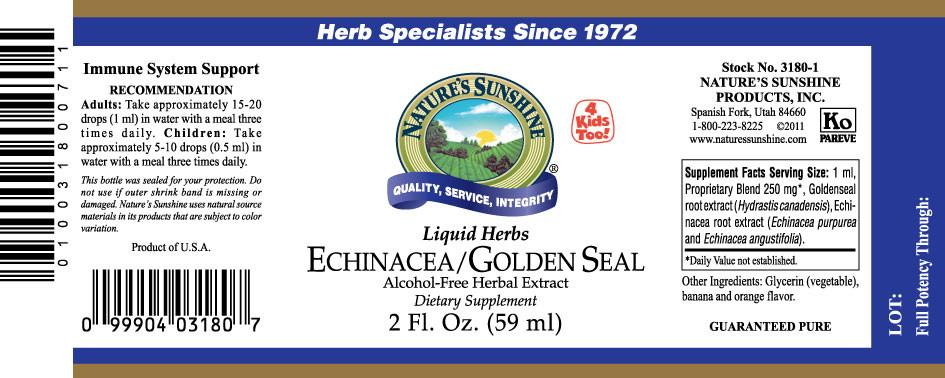 Nature's Sunshine Echinacea/Golden Seal Liquid (2 fl. oz.) - Nature's Best Health Store