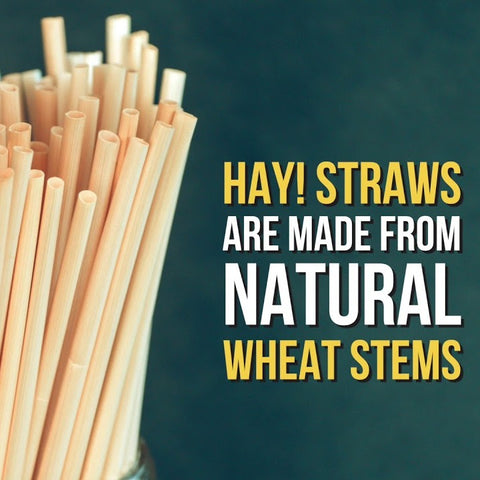 products/hay_straws_edited.jpg