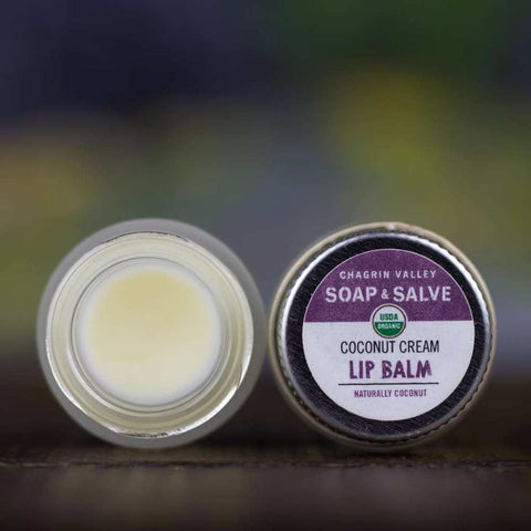 products/natural-organic-lip-balm-coconut-cream_zero-waste-society-2.jpg