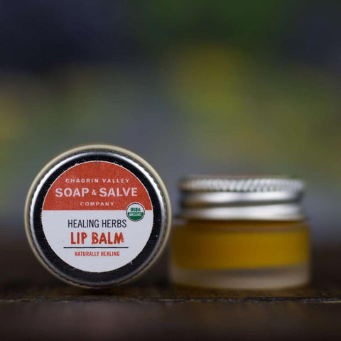 products/natural-organic-lip-balm-healing-herbs_zero-waste-society-1.jpg