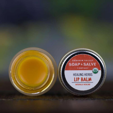 products/natural-organic-lip-balm-healing-herbs_zero-waste-society-2.jpg
