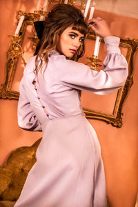 Lavender Long Sleeve Retro dress