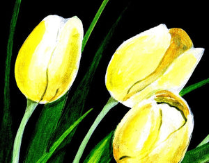 Yellow Tulip 2