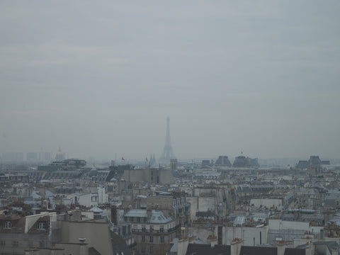 Paris. Rooftops with a view of the Eiffel Tower - Landscape Photography Print