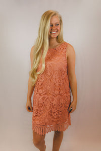 Merry Lace Overlay Dress