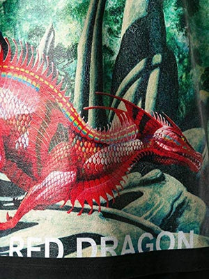 Tee Shirt Homme luxe dragon Valentino - amazing deal 4 you