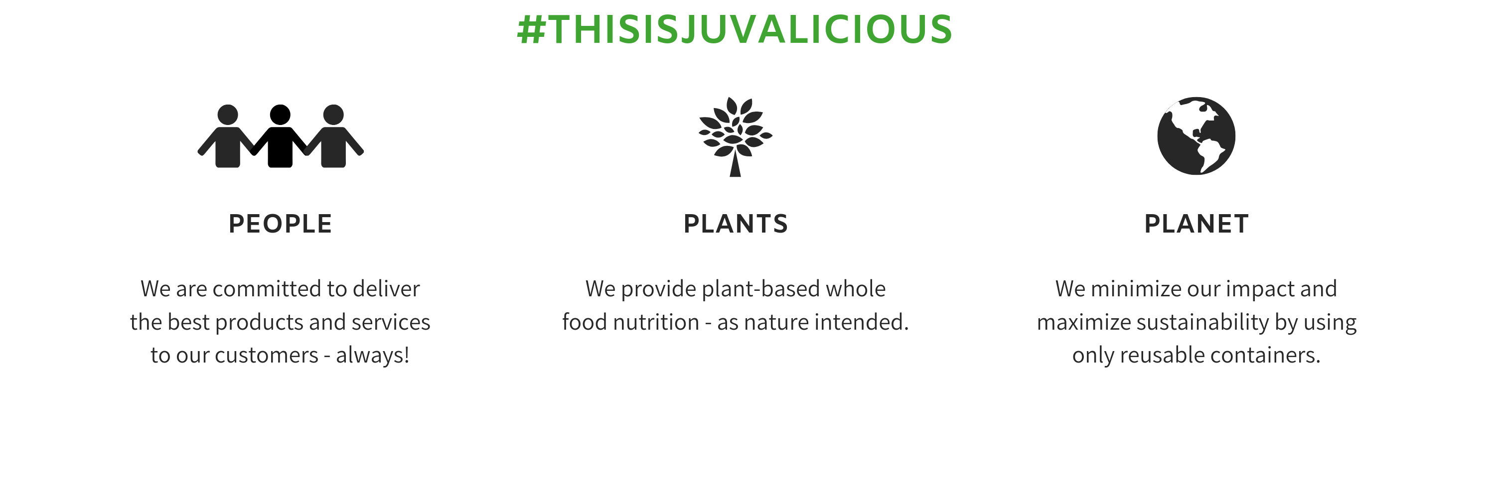 Juvalicious Values People Plants Planet