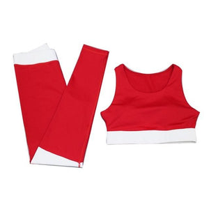 Ensemble fitness rouge