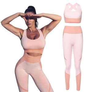 Ensemble fitness seamless