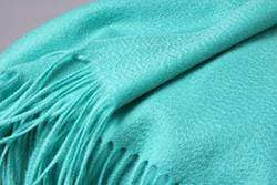 Her Shop accessories Mint Green Hot Sale All-Match Men Women Solid Color Luxurious Elegant Cashmere Scarves With Tassel