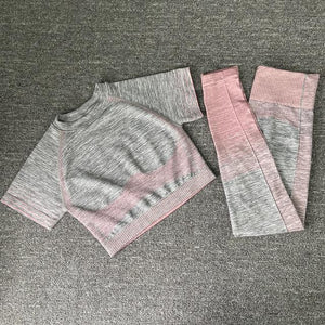 Her Shop activewear short pink set 2pcs / M / CHINA Seamless Women Long Sleeve Yoga Set