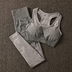 Her Shop Pants and Leggings Gray set / L Women's Seamless Yoga Set Sports Bra and Gym Clothing