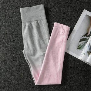 Her Shop Pants and Leggings Pink Pant / L Women's Seamless Yoga Set Sports Bra and Gym Clothing