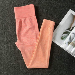 Her Shop Pants and Leggings Orange Pants / L Women's Seamless Yoga Set Sports Bra and Gym Clothing