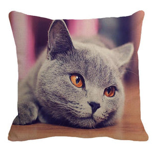 Her Shop pillow case 45X45cm / 6 Cute British Shorthair Cat Linen Pillowcase