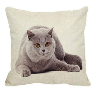 Her Shop pillow case 45X45cm / 2 Cute British Shorthair Cat Linen Pillowcase