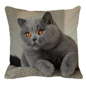 Her Shop pillow case 45X45cm / 19 Cute British Shorthair Cat Linen Pillowcase