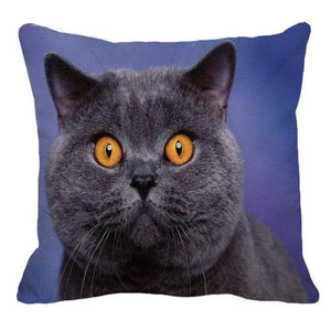 Her Shop pillow case 45X45cm / 7 Cute British Shorthair Cat Linen Pillowcase