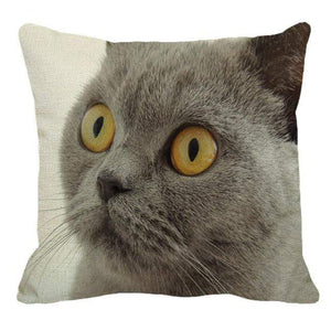 Her Shop pillow case 45X45cm / 15 Cute British Shorthair Cat Linen Pillowcase