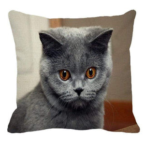 Her Shop pillow case 45X45cm / 13 Cute British Shorthair Cat Linen Pillowcase