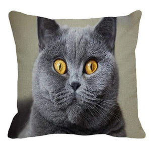Her Shop pillow case 45X45cm / 20 Cute British Shorthair Cat Linen Pillowcase