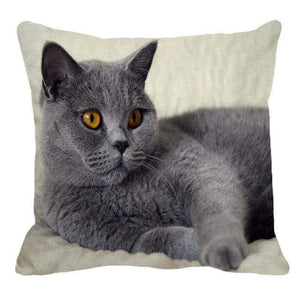 Her Shop pillow case 45X45cm / 12 Cute British Shorthair Cat Linen Pillowcase