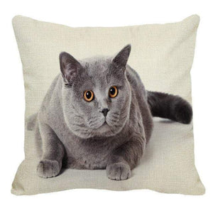 Her Shop pillow case 45X45cm / 11 Cute British Shorthair Cat Linen Pillowcase