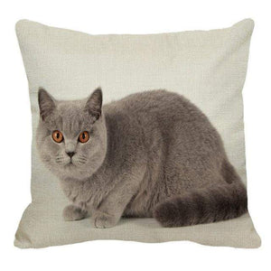 Her Shop pillow case 45X45cm / 14 Cute British Shorthair Cat Linen Pillowcase