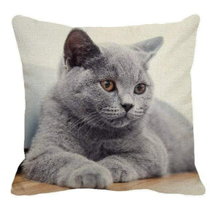 Her Shop pillow case 45X45cm / 9 Cute British Shorthair Cat Linen Pillowcase