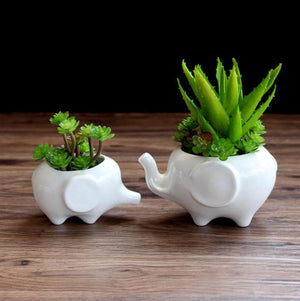 Her Shop Tableware Flower pot planters White elephant ceramic pote de vidro for sale garden pots flower vasi macetas pot fleur bonsai pots