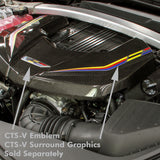 2016-19 Cadillac CTS-V Carbon Fiber Engine Cover (2 Variations) - Nowicki Autosport