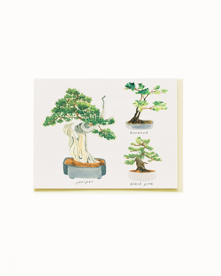 Bonsai 1 Card