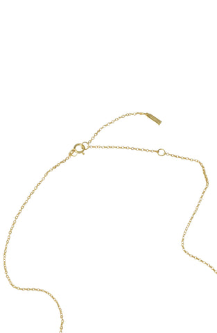 Cis Gender Necklace silver gold