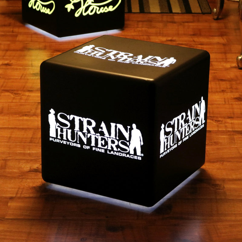 Customized Branded Seat Stool Table, Free Standing Light Box, Mains Powered Cube 40cm