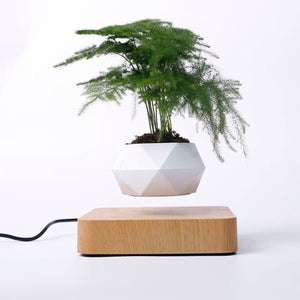 FULLPOWERHOME - LeviPlant - Air Floating Flower Pot