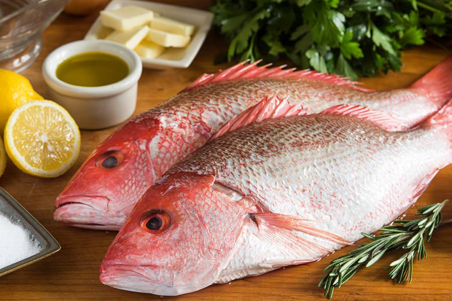Fresh Red Snapper 2lb