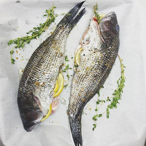 Fresh Black Sea Bass - WeGotMeat- Columbus Ohio Halal Meat Delivery