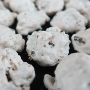 [KUEH-Rated 2021 Pre-Order] Chocolate Chip Cornflakes Meringue #ravingreviews