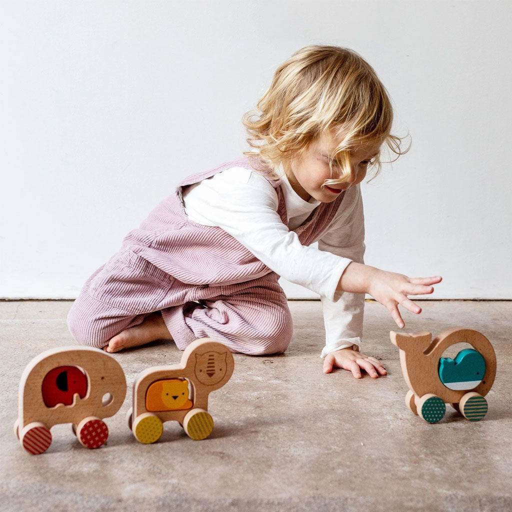 Petit Collage Wooden Push Along Little Lion - UrbanBaby shop