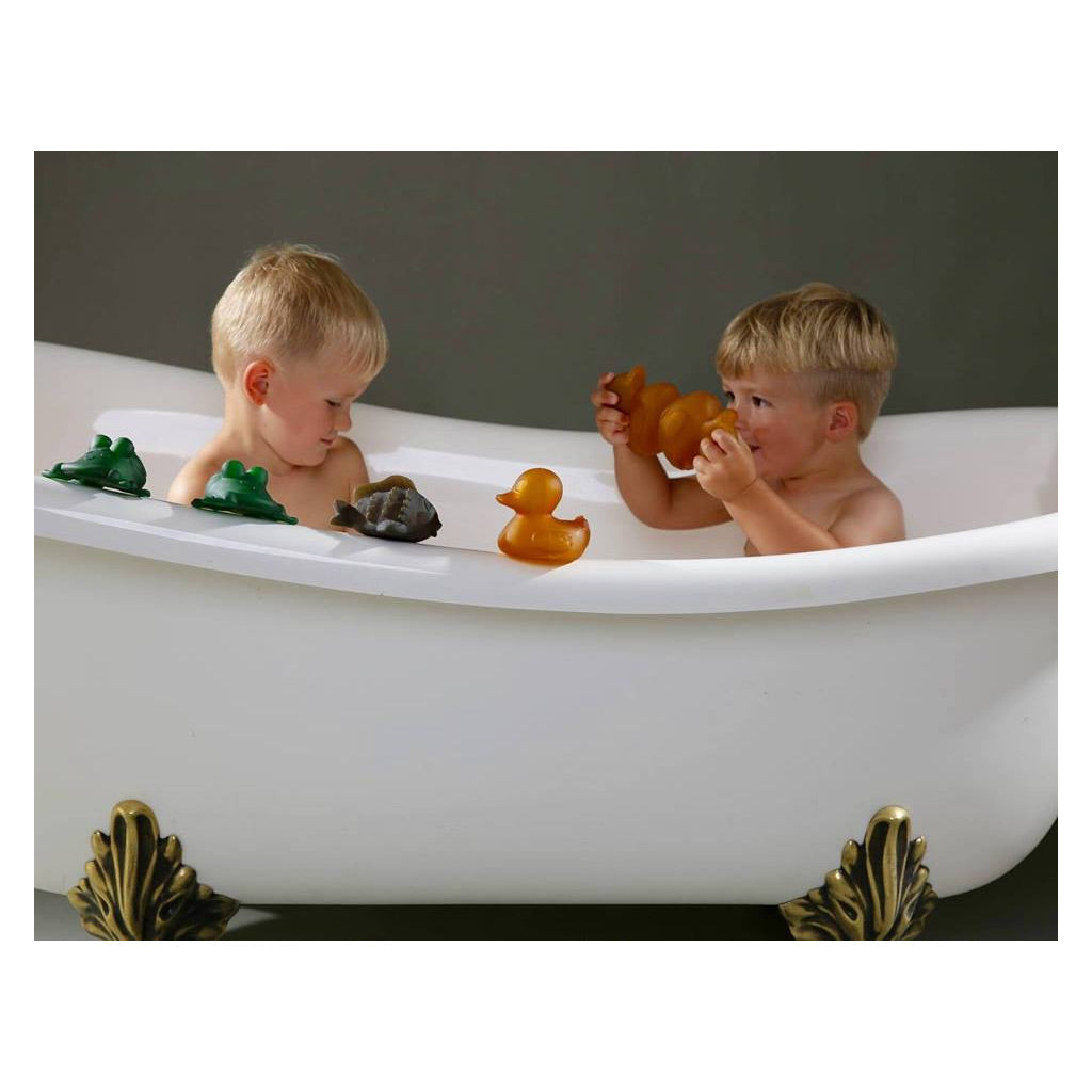 Hevea Baby Rubber Bath Toy Fred the Frog - UrbanBaby shop